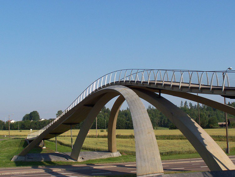 interesting bridges davinci1
