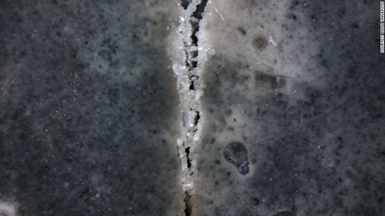 bacteria for concrete cracks2