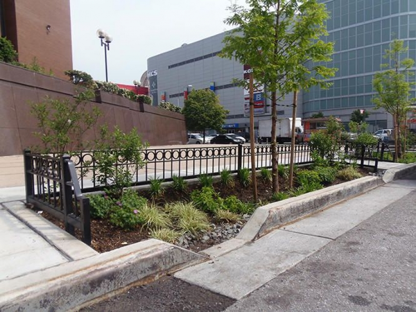 Rain gardens in NY City to eliminate the overflows during intense precipitation events